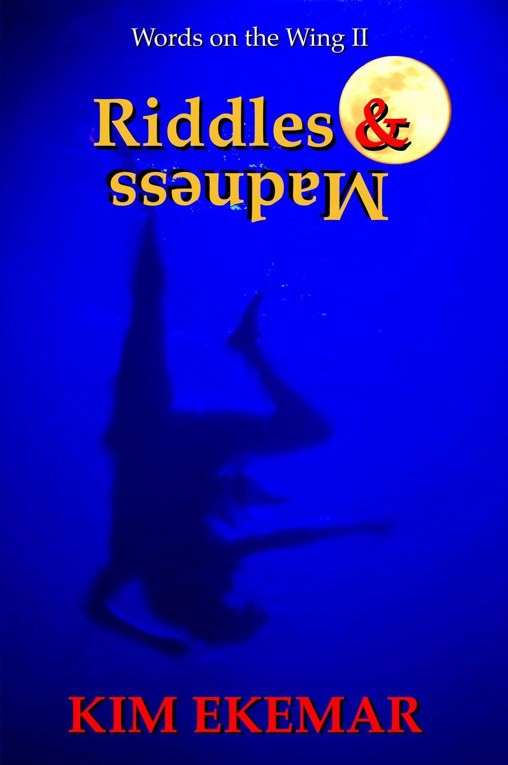 180916 EBOOK Riddles & Madness.jpg