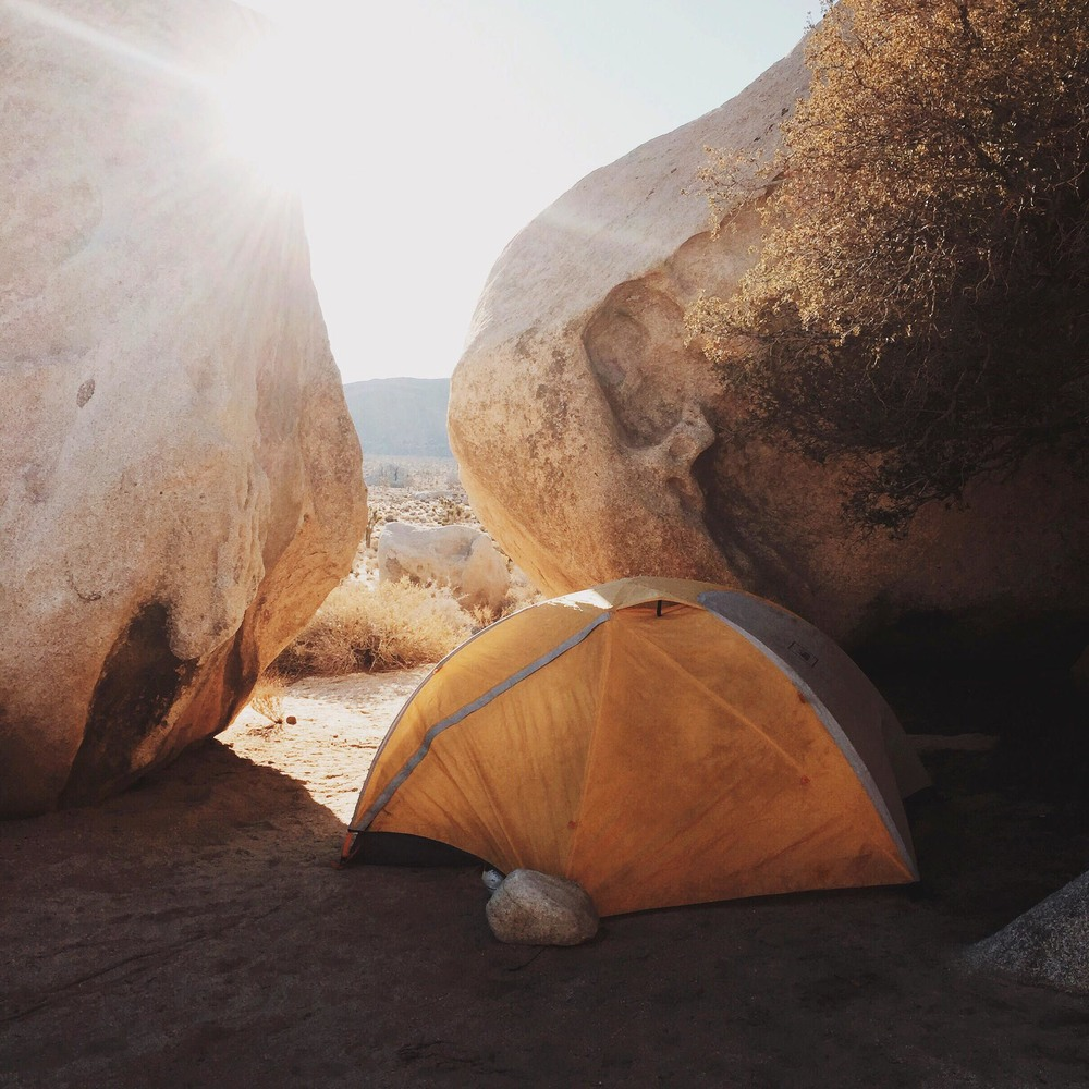 Camping in Joshua Tree | Katch Silva