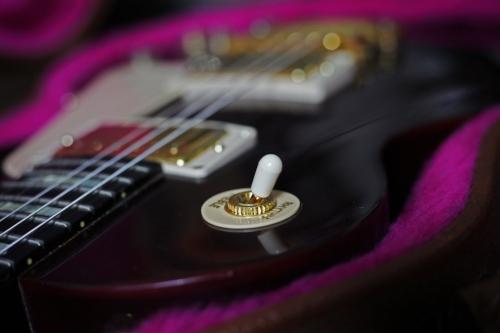 Gibson Switch.jpg