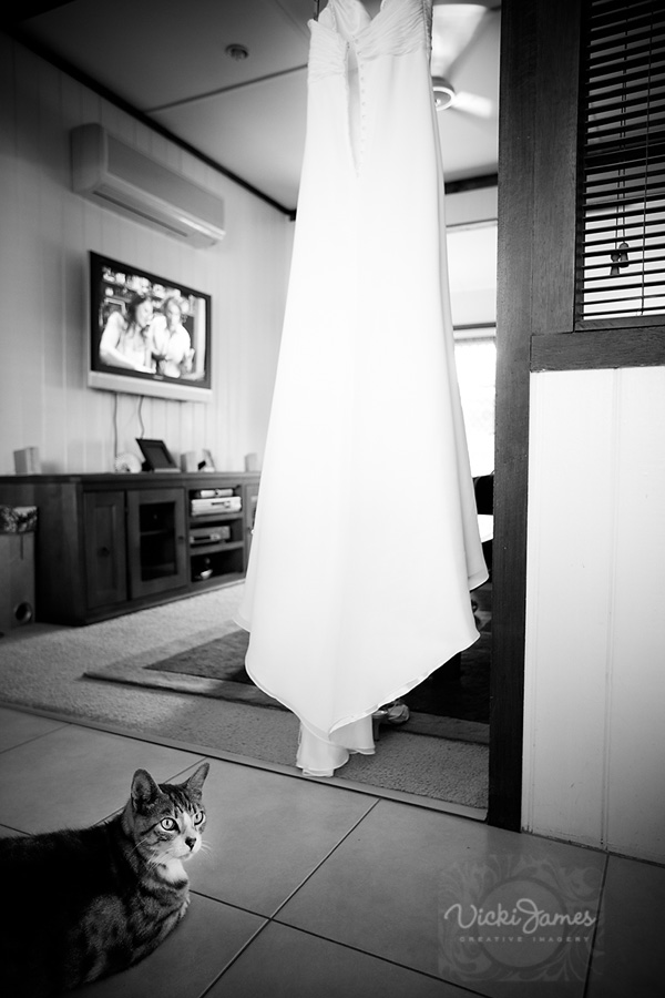 002Yamba-Wedding-Photographer