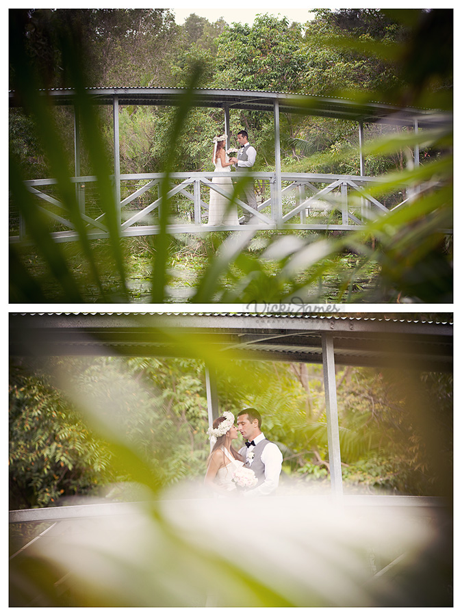 Angourie Rainforest Resort, Yamba Wedding, Daniel and Kaori