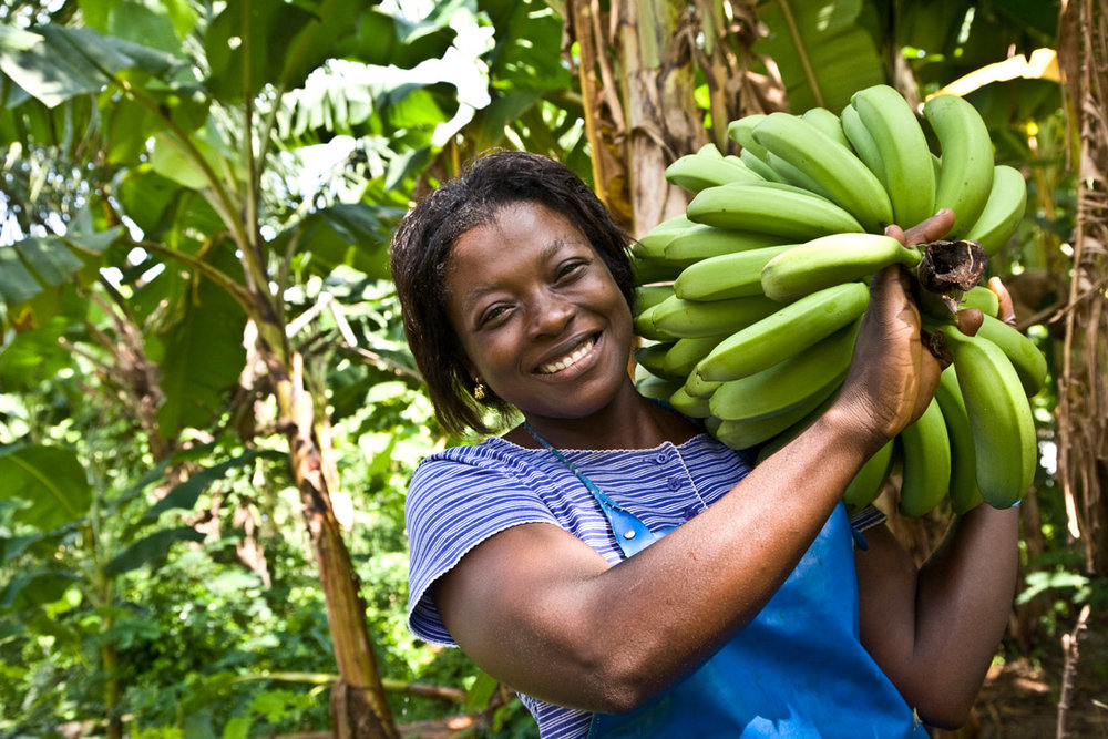 Fairtrade-grower.jpg