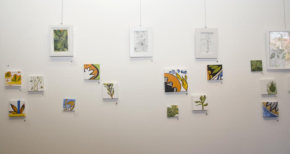 Imandari  Installation January 2015  photo credit: Erin Henry