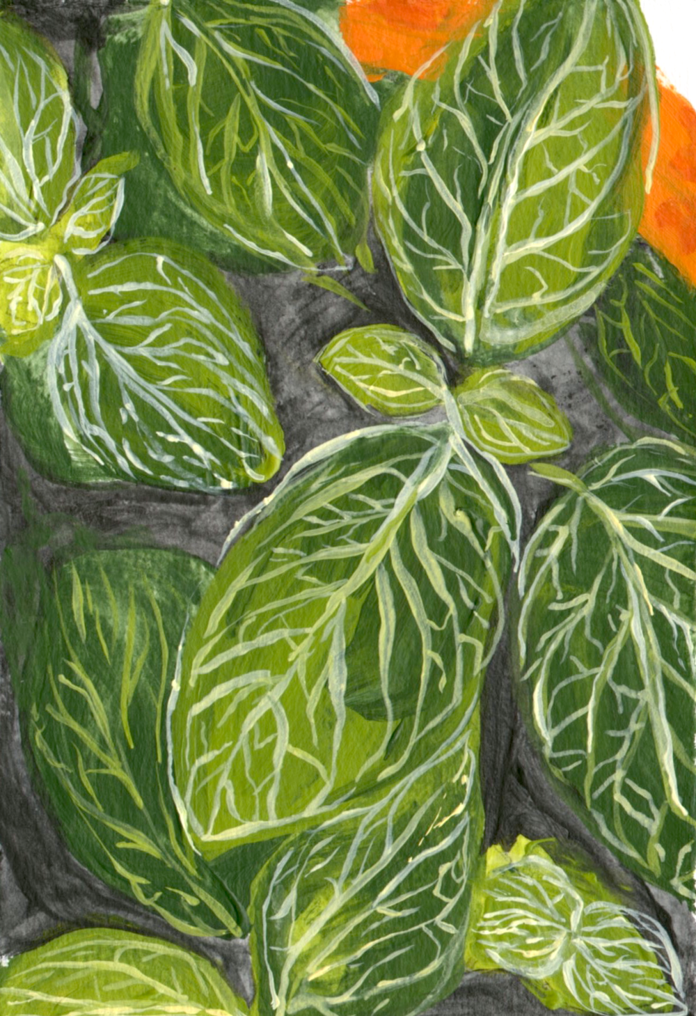 "Plants in Orange  November 2014 Acrylic on paper 4""x 6"""