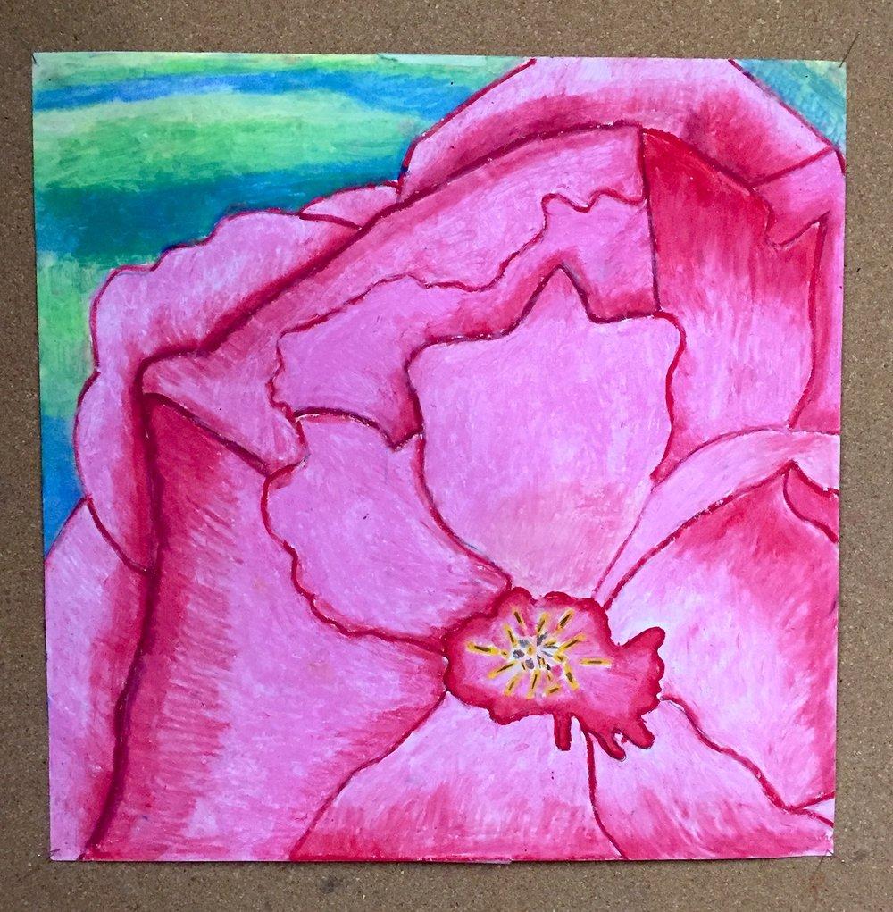 pastel_pink.jpg