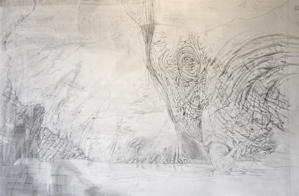 #Elephant Drwg3.28.15.jpg