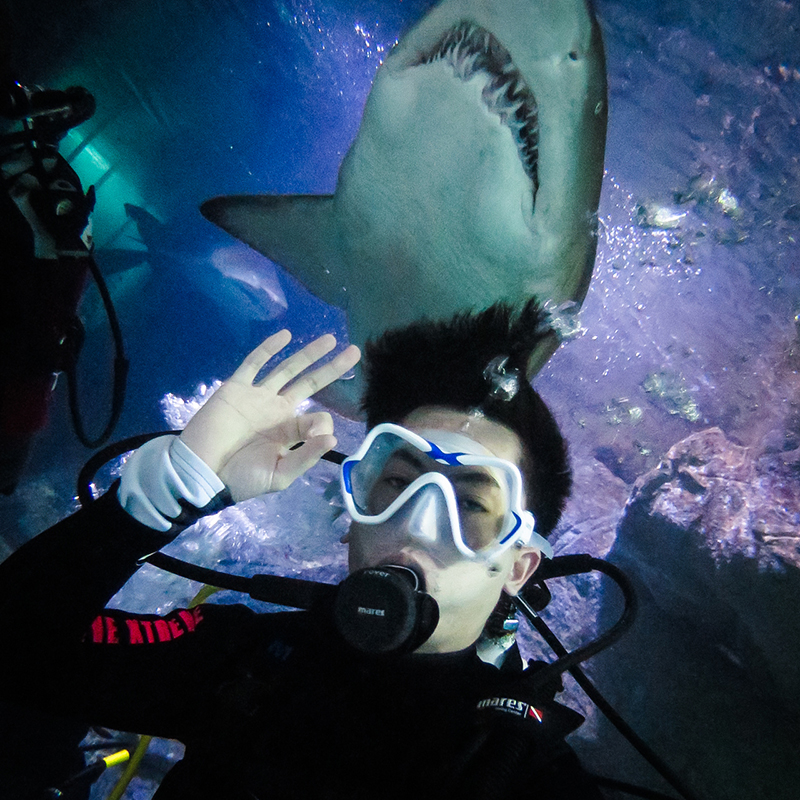 PIctured: Me slowly losing my oxygen supply. I'm okay with the shark though. :)