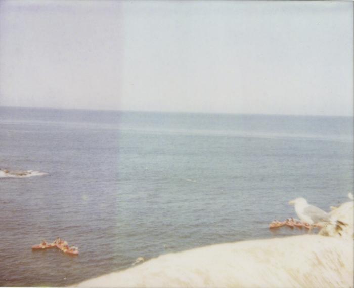 gaby j newport polaroid 12 sml