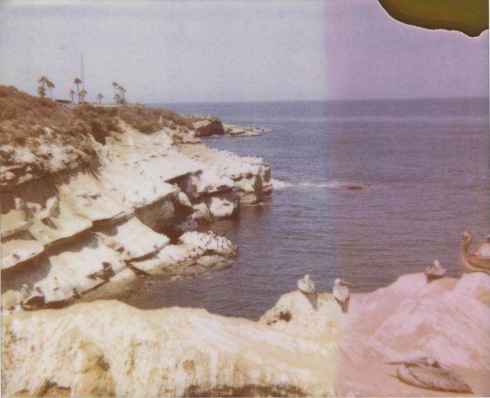 gaby j newport polaroid 13 sml