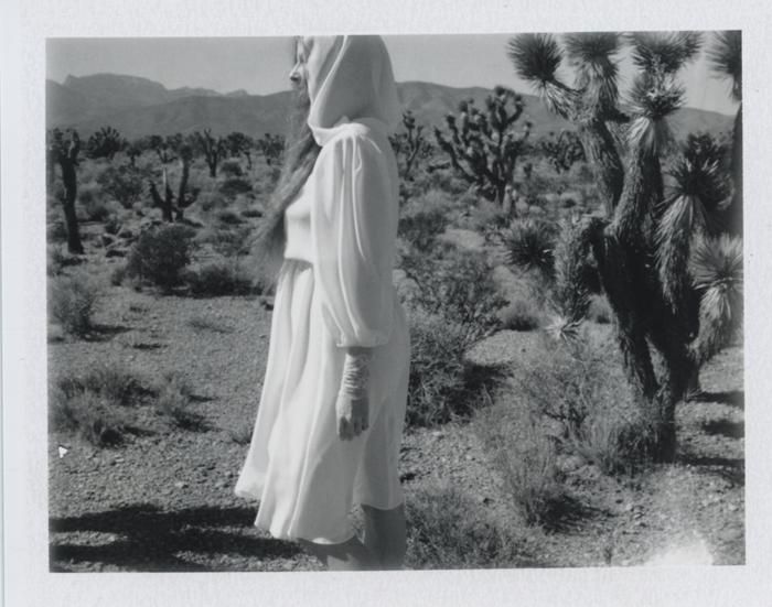 gaby j desert 14