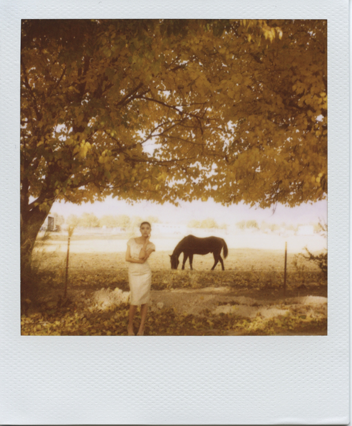 gaby j photography bride horse fall leaves polaroid