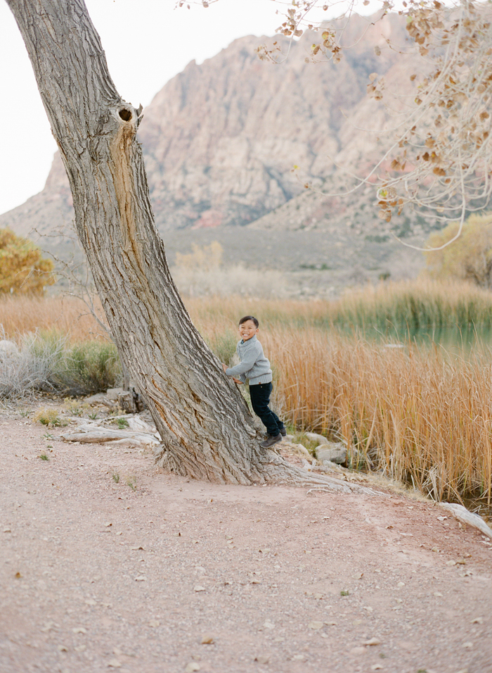 Gaby J Photography Spring Mountain ranch family_04 sml