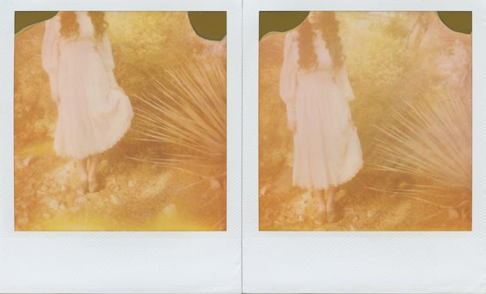 polaroid 3 sml
