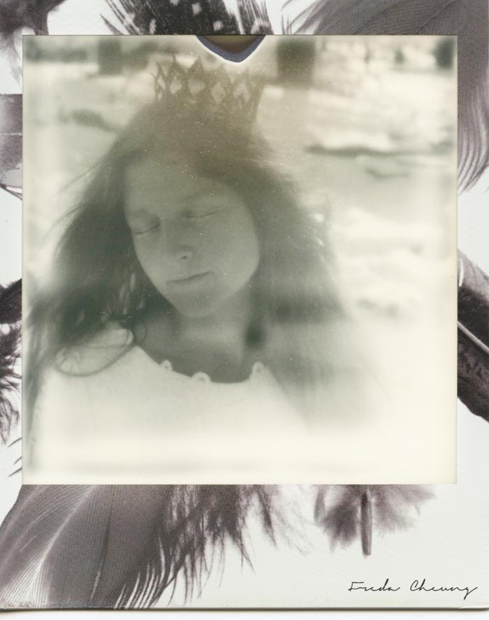polaroid 2 sml