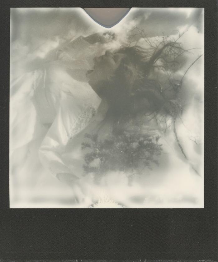 polaroid 6 sml