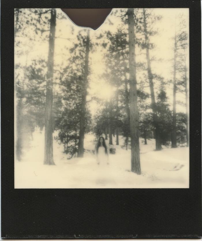polaroid 7 sml