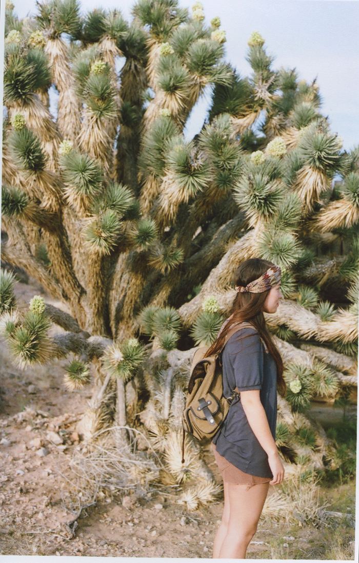 exploring the nevada desert gaby j photography_09