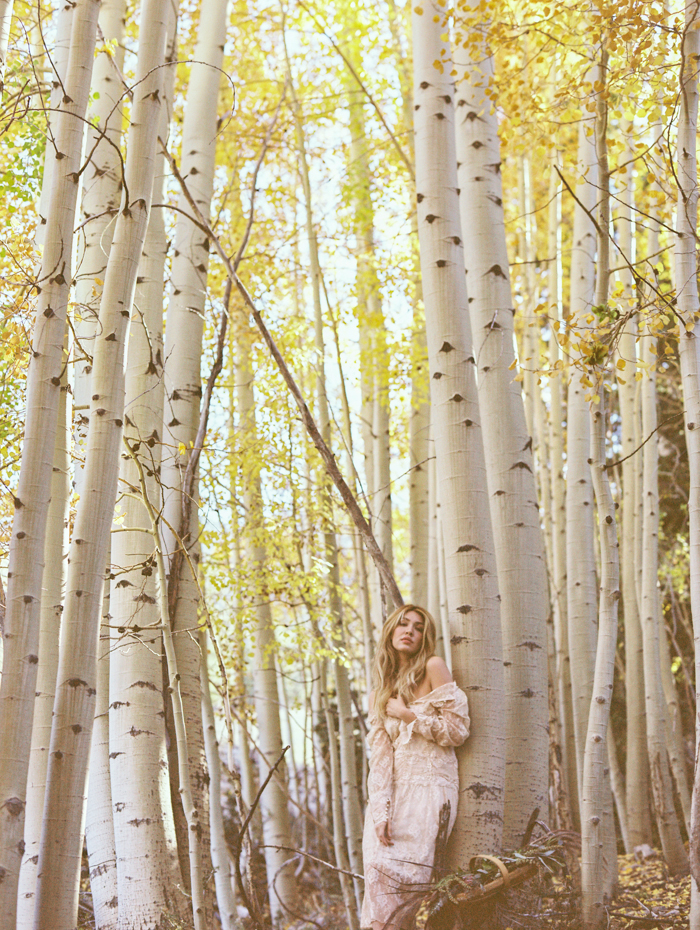 autumn in mt charleston photography 13