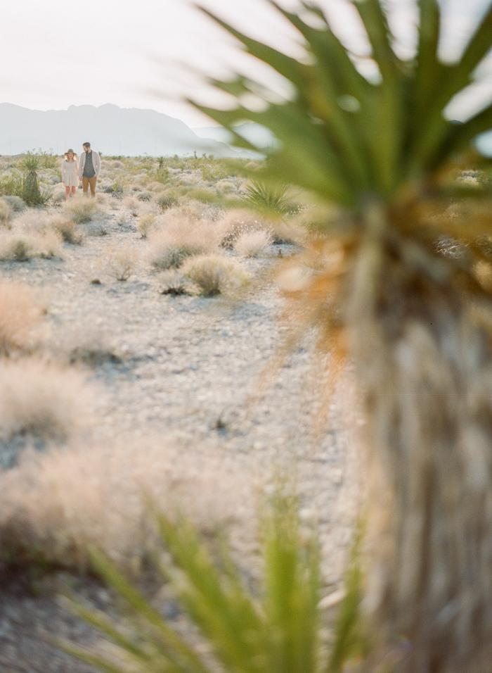 las vegas desert engagement mojave yucca plant