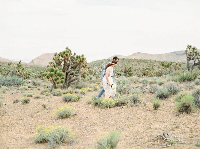 joshua tree meadow las vegas wedding photo