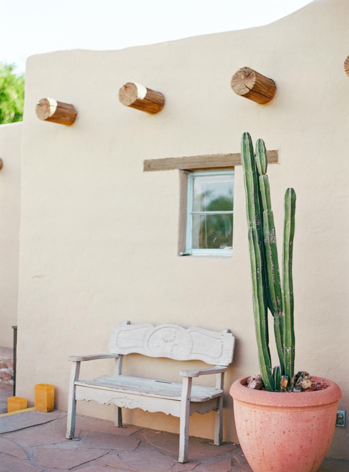 desert botanical garden phoenix arizona 16