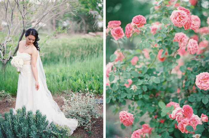 las vegas wedding photographer springs preserve 15