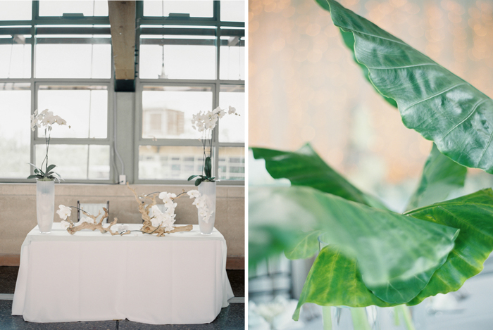elephant ear plant leaves wedding decorations