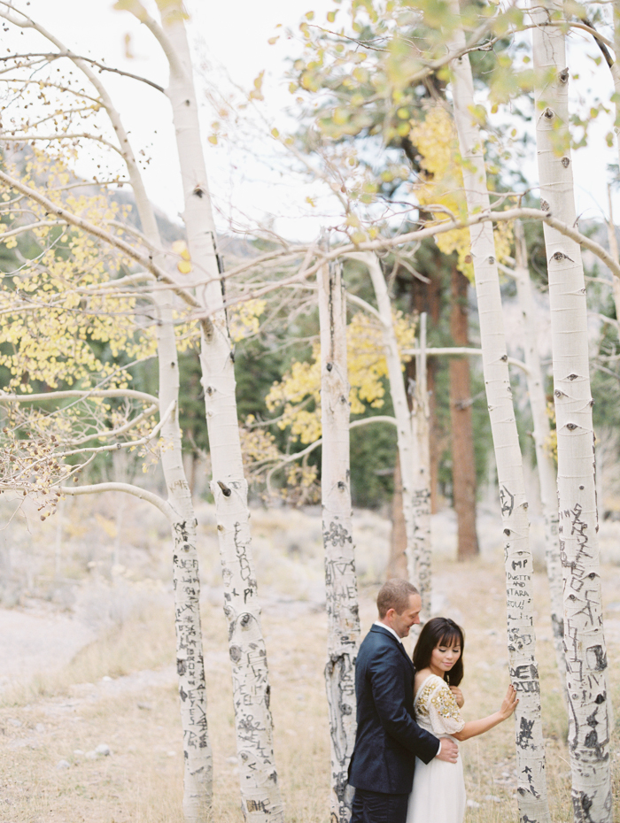 romantic vegas mt charleston engagement photo