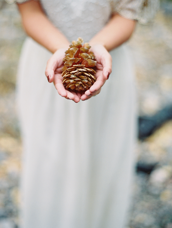 romantic vegas forest engagement photo pinecone