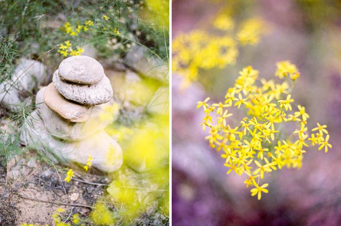 romantic zion national park engagement photo
