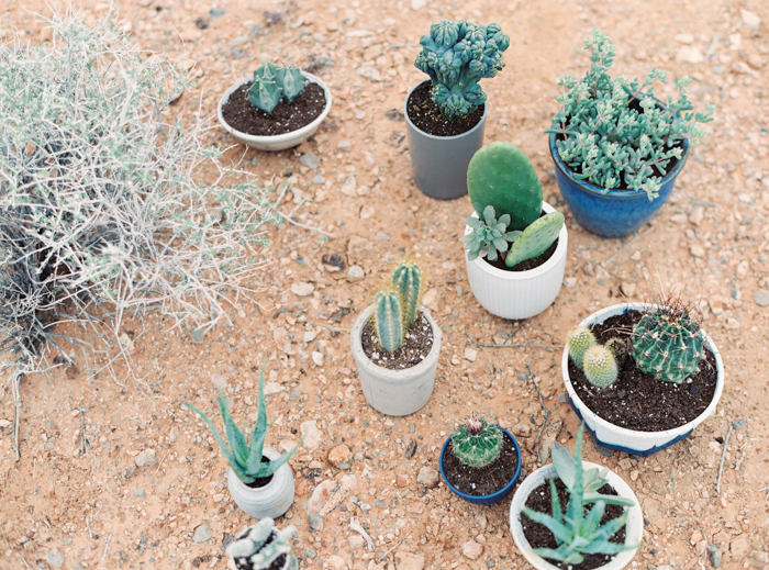 desert indigo inspired wedding details with cactus
