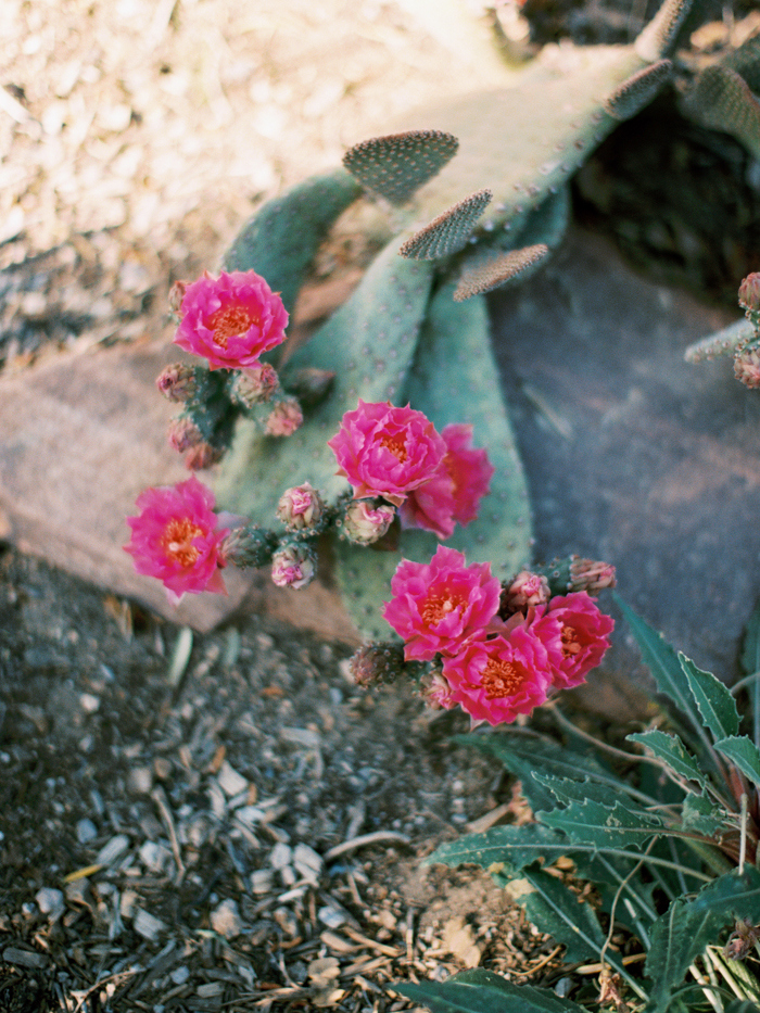 anthropologie floral inspired las vegas wedding 2.jpg