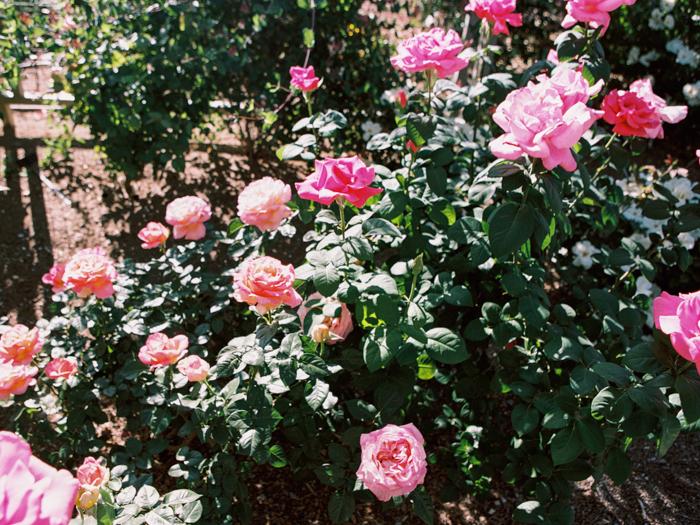 anthropologie floral inspired las vegas wedding 11.jpg