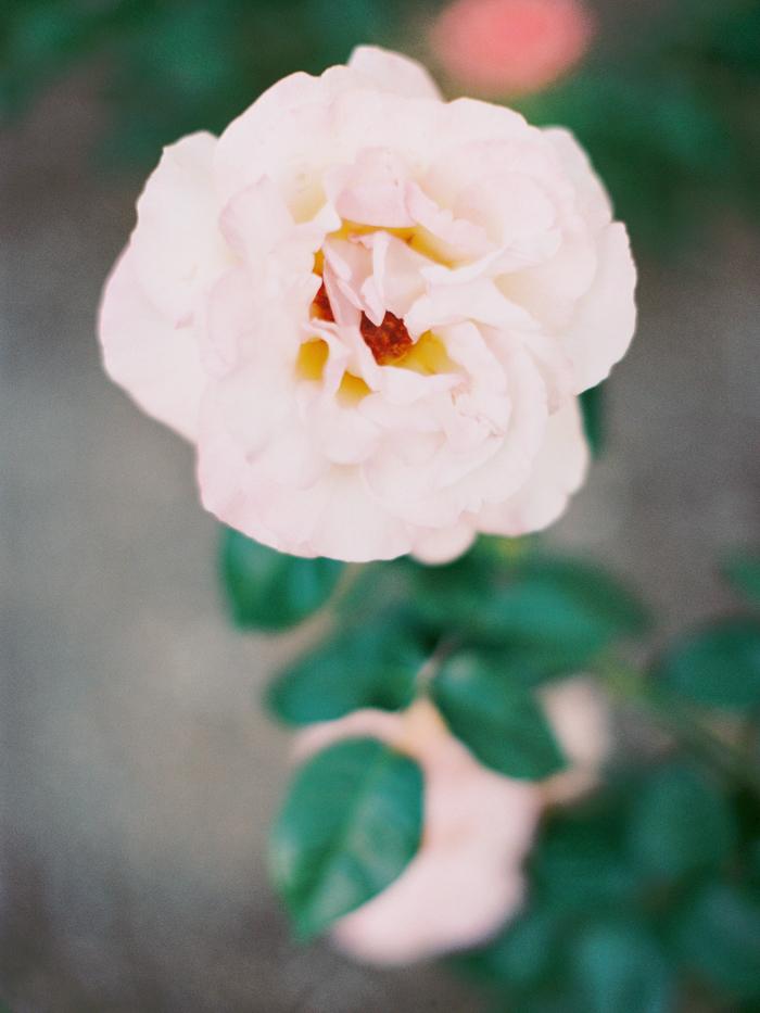 anthropologie floral inspired las vegas wedding 31.jpg