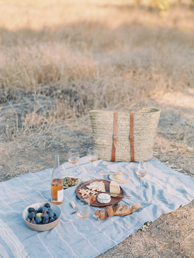 sonoma ca wine tasting picnic | picnic on a vineyard | gaby j photography | sonoma northern california wedding photographer