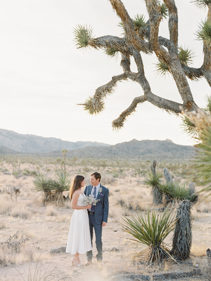 joshua tree wedding photography