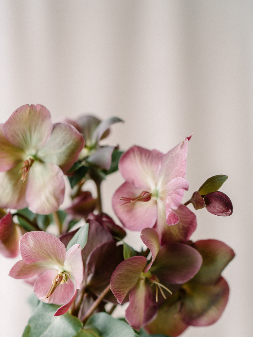 hellebores wedding bouquet