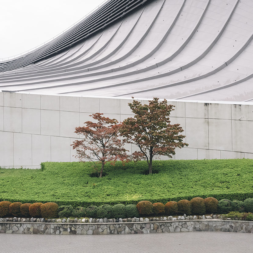 Japan__1.jpg