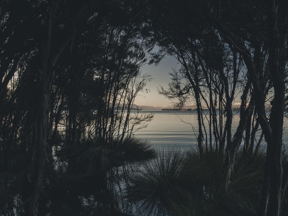NZ07.jpg