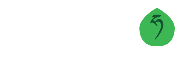 Mountain Hazelnuts