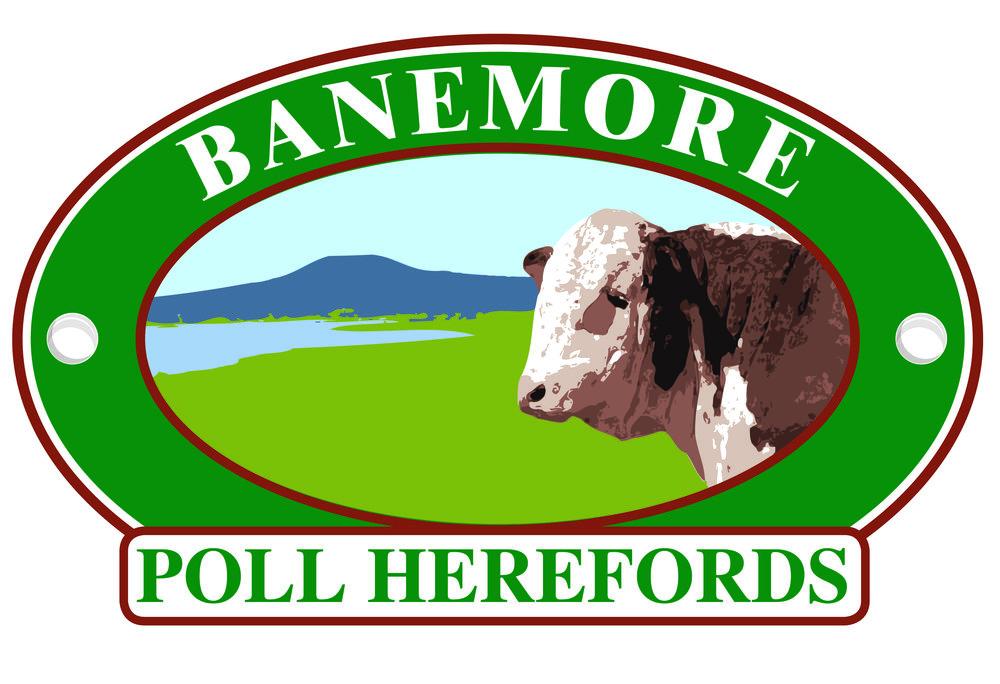 banemore logo