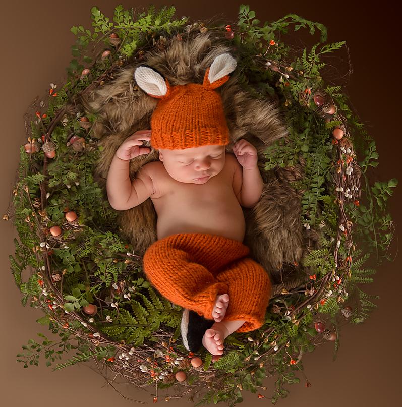 newborn boy fox woodsy wreath seattle newborn photography tacoma.jpg