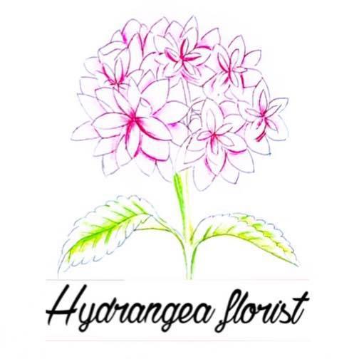 Day1_hydrangea.florist_03.jpg