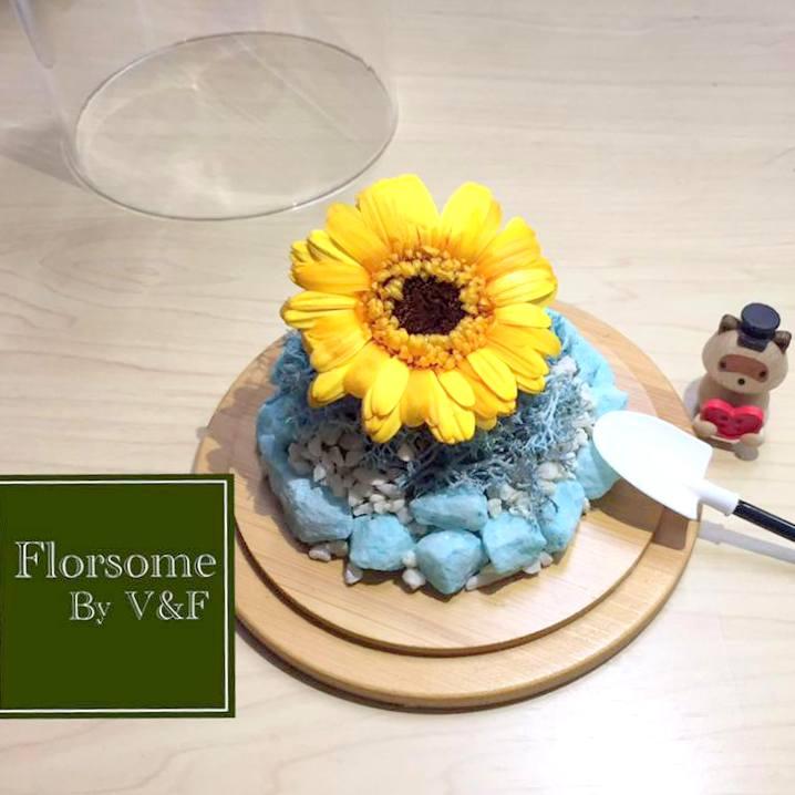 florsomebyvandf3.jpg