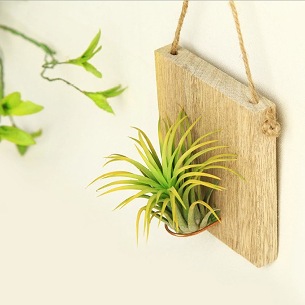 plantingtime_jc2.jpg