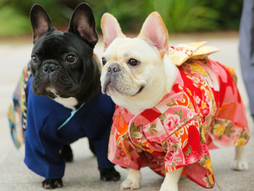 Japanese Wedding 01.jpg