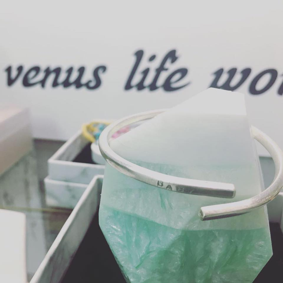 Venus life workshop.jpg