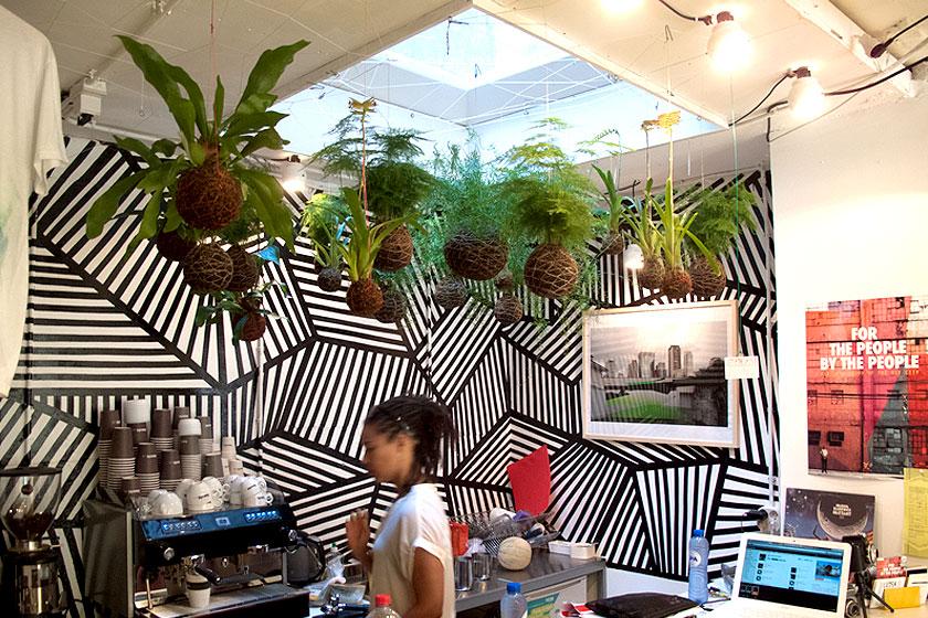 ... String gardens en kokedama. zijn hangende planten een nieuwe trend