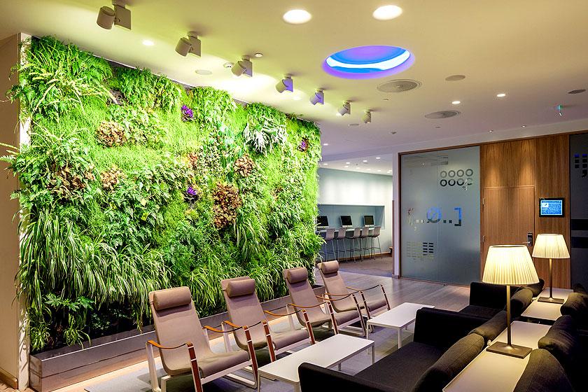 Living Walls  - Een muur van planten is uitermate geschikt in kantoren.