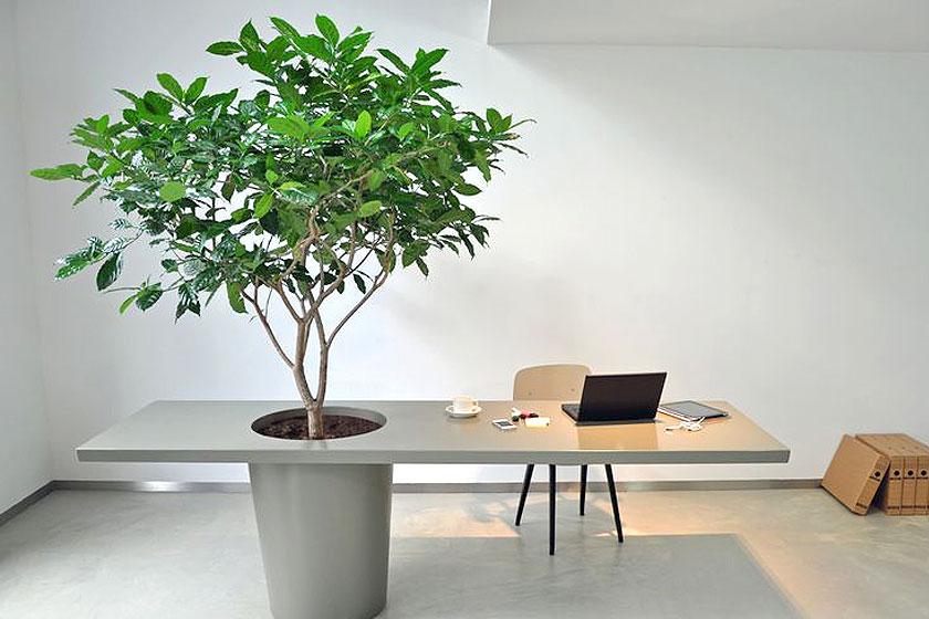 Plantenbakken kunnen prima worden geïntegreerd in de kantoormeubels.